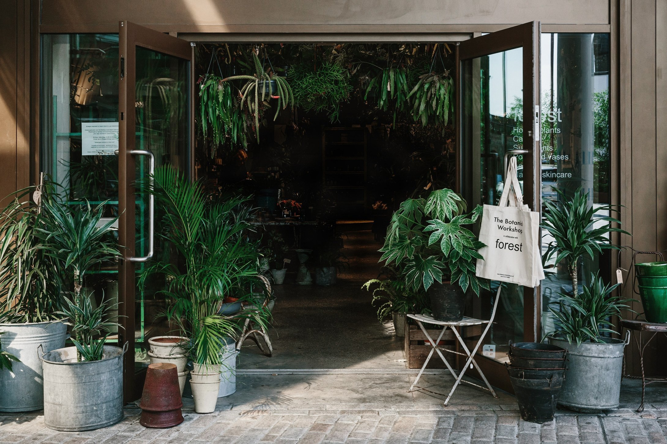 Unusual House Plants For Sale Best Garden Centres And Plant Shops In London 24 Lush Places To