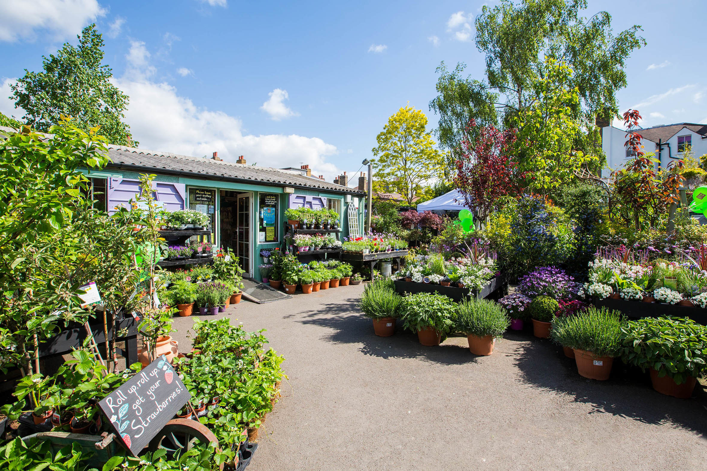 Best Garden Centres And Plant Shops In London 24 Lush Places To Buy Plants