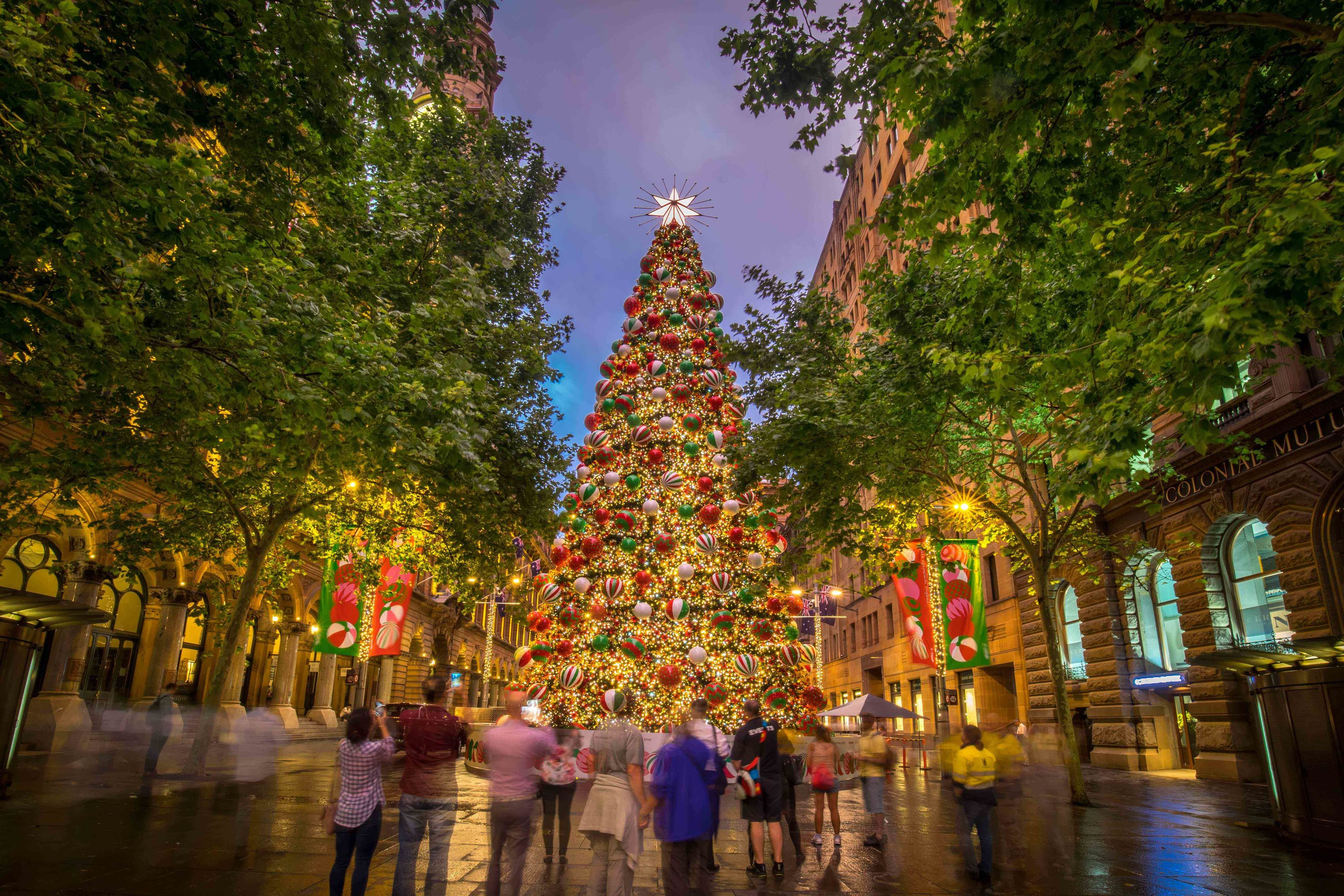 Christmas Shops Sydney The Best Christmas Lights In Sydney
