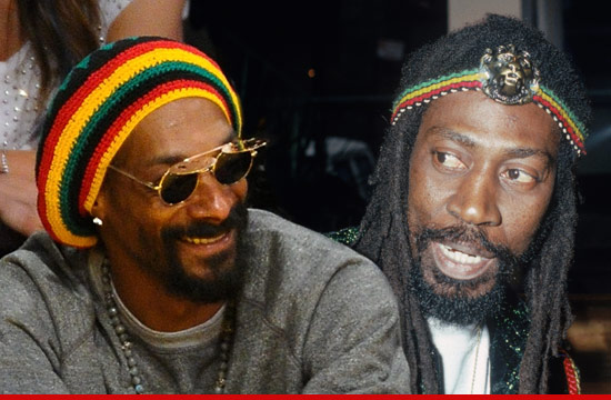 0123_buddy_wailer_snoop_dogg_snoop_lion_article_getty_2