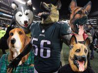 Philadelphia Costume Shops Scrambling For Dog Masks - Long ...