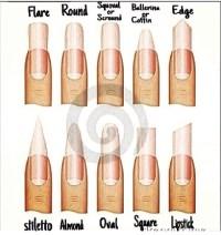 Different Nail Types | Trusper