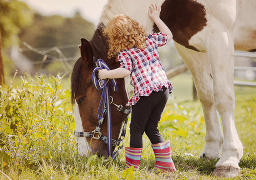 Horse Riding Wallpaper Hd The Attentive Equine Gender Roles And Horse Riding Are