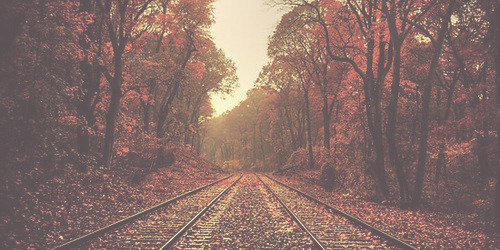 Fall Hipster Wallpapers Twittah Pale Fall Headers ☯ Like If You Save Use