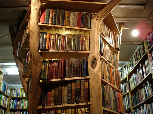 The Centered Librarian Tree Book Shelf
