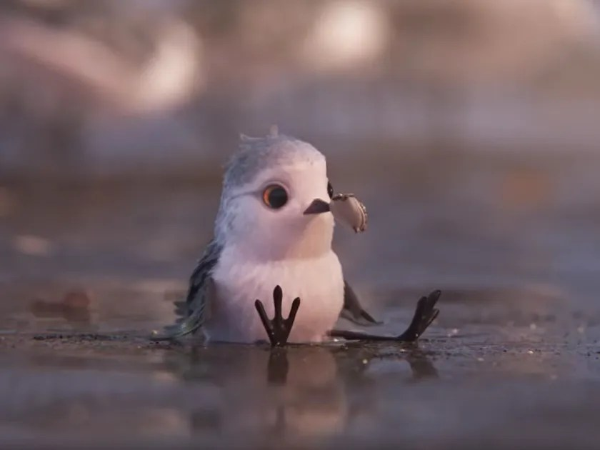 Good Morning Hd Wallpaper With Cute Baby Pixar S Latest Short Piper Is Almost Painfully