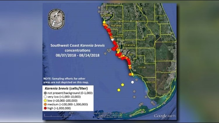 Red tide forecast FWC releases new map, respiratory issues reported