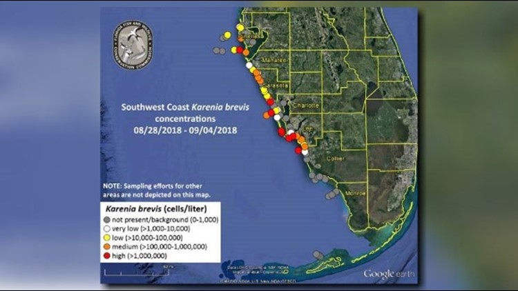 FWC releases new red tide map as it works to determine if Gordon