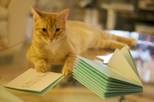 Watson and the Holiday Cards