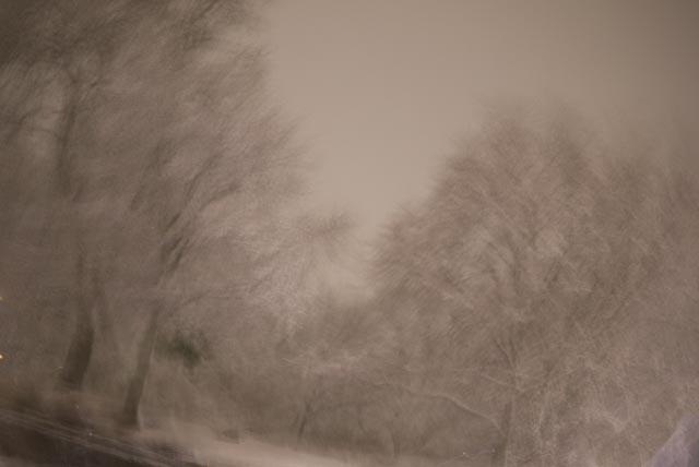 snö.foto: BelleBlue@Photo 2014