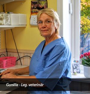 Gunilla Lundgren Veterinär Båstad