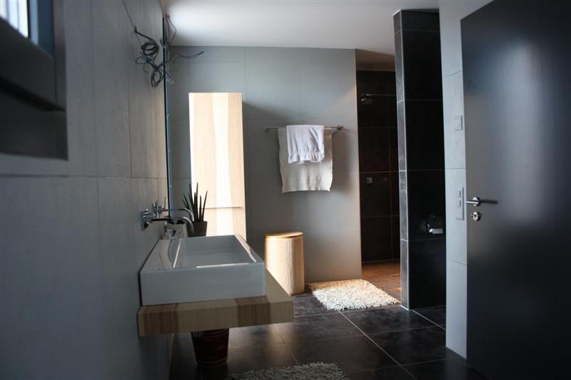 Aide idée salle de bain avec carrelage anthracite - 14 messages