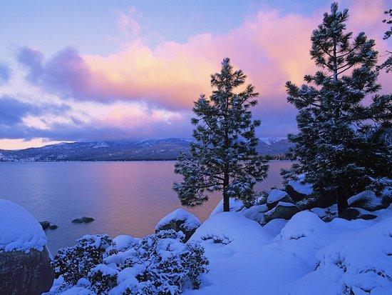Dreams of Lake Tahoe