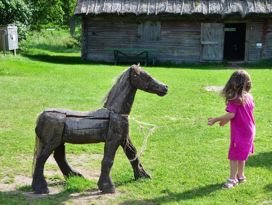 C'mon horse!