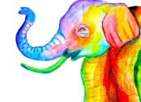 Rainbow Baby Elephant Nursery Wall Art | Rainbow Baby Gift ...