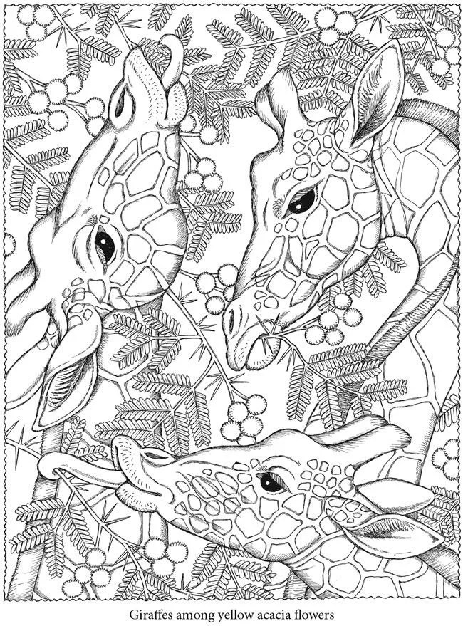 Free Coloring Pages For Adults POPSUGAR Smart Living - culring pags
