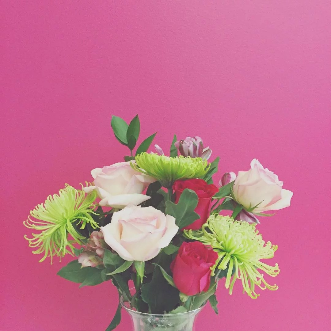 Pink Flowers Australia Meaning Of Roses What The Number Of Roses Means Popsugar