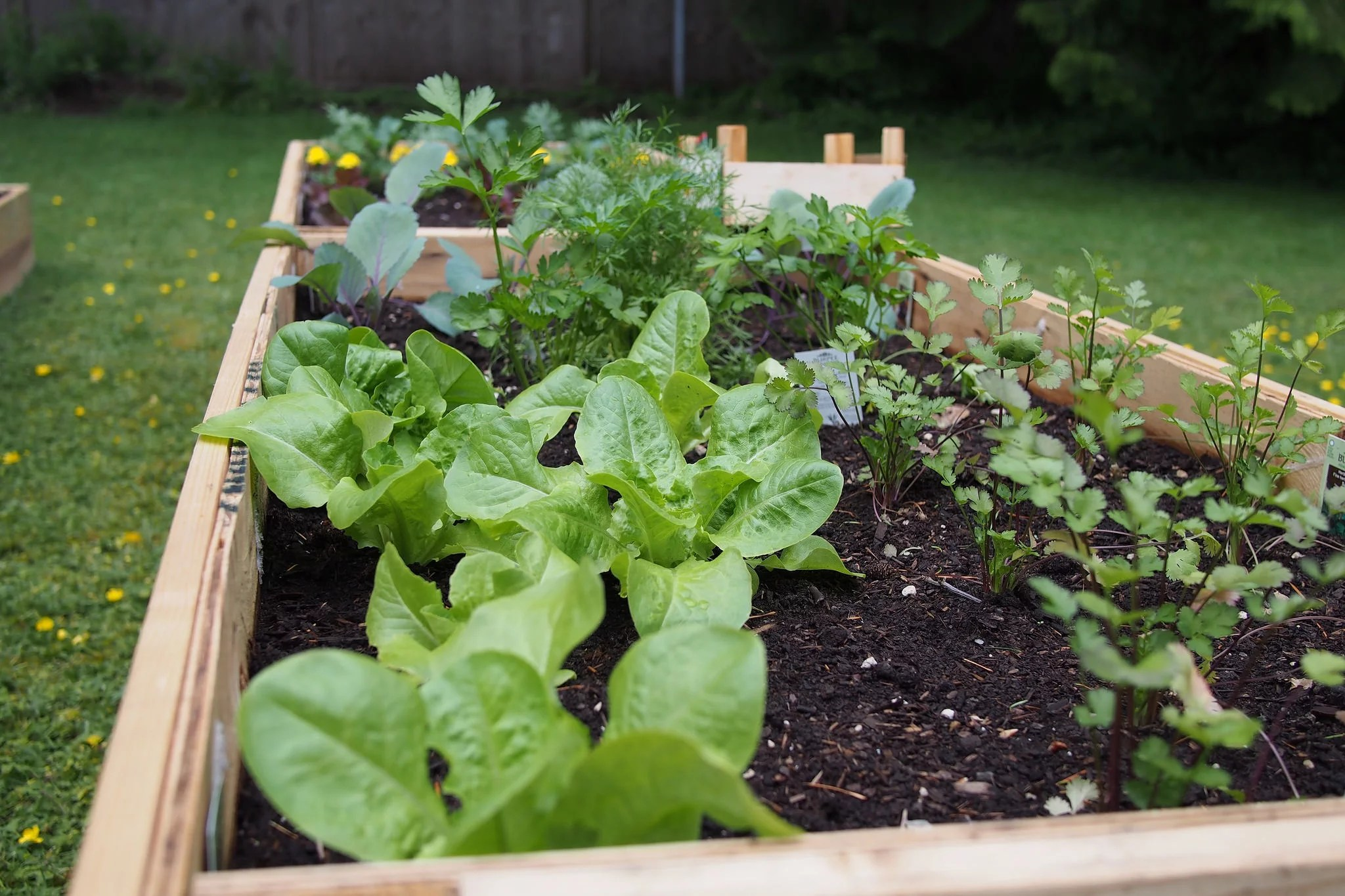 Build Raised Garden Beds Start Prepping For Fall With These Vegetable Gardening Tips Popsugar Food Photo 5