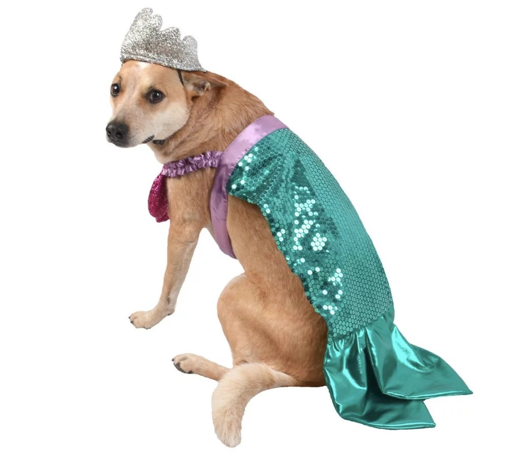 Cheap Pet Costumes