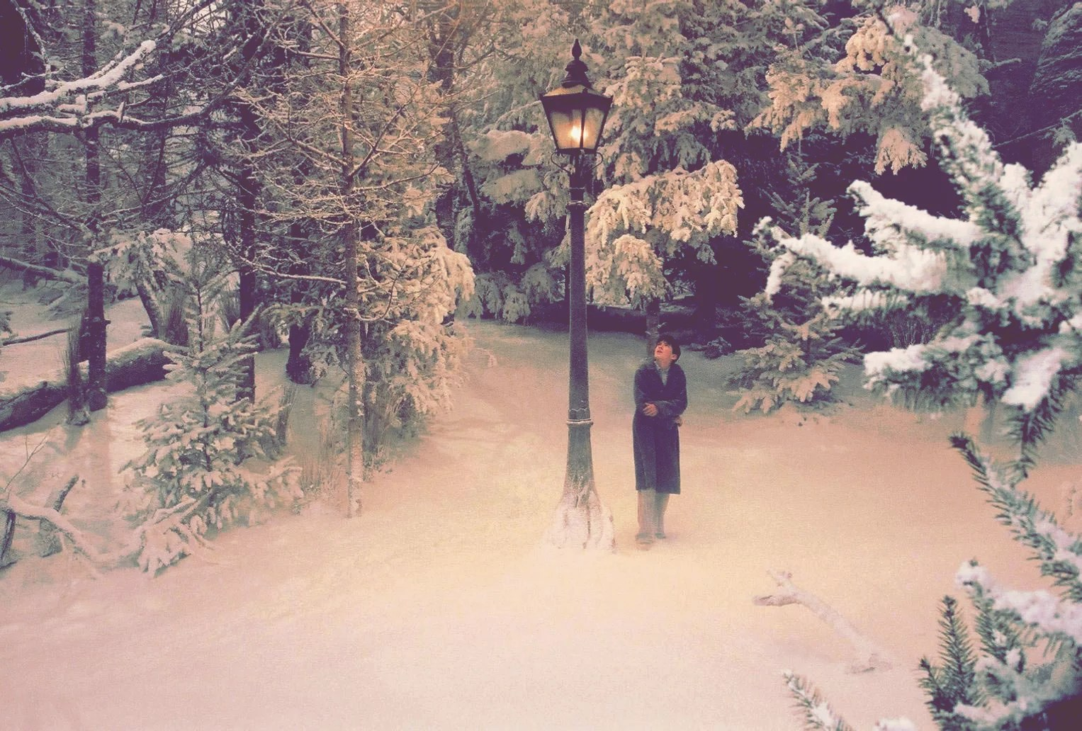 Narnia 15 Fictional Places You Wish You Could Visit Popsugar Smart Living Photo 6