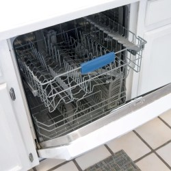 Small Crop Of Mold In Dishwasher