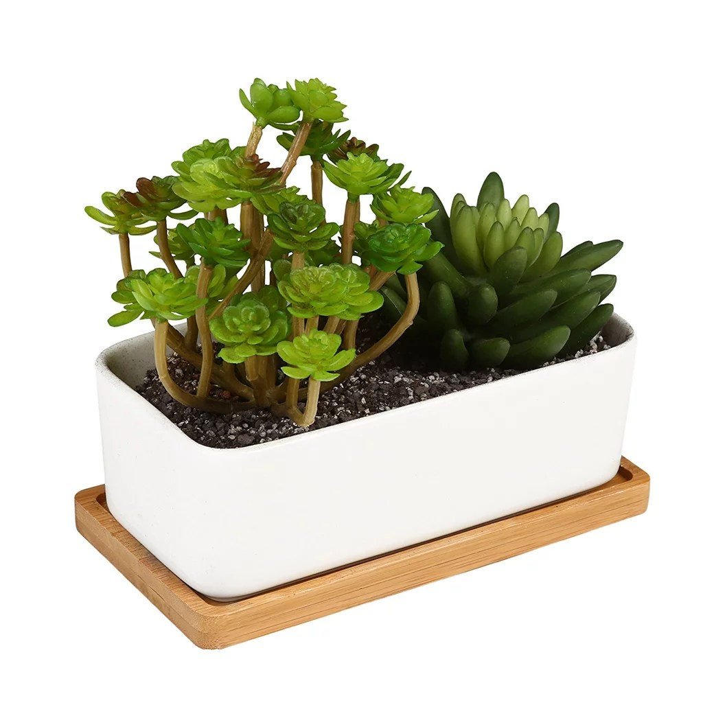 Cubicle Wall Planter Ceramic Planter Cubicle Decor Ideas Popsugar Smart Living Photo 10