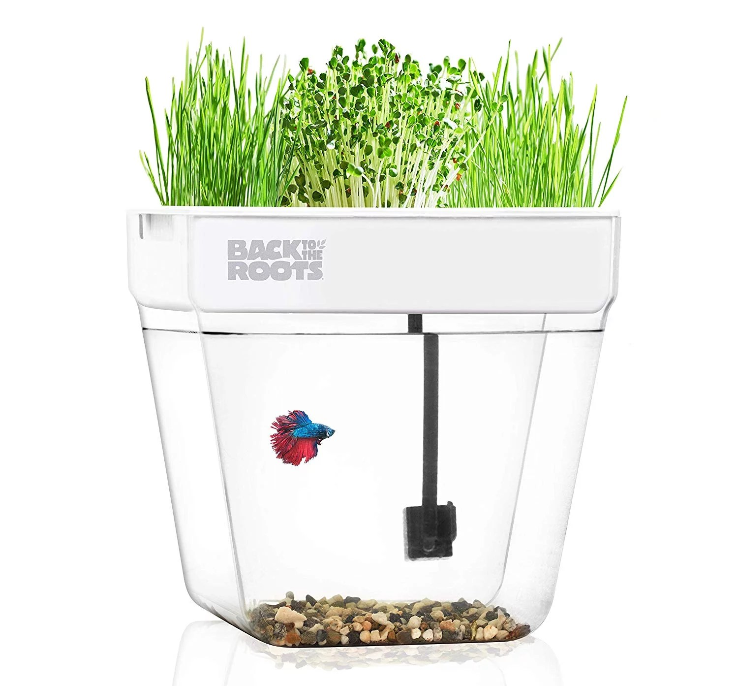 Back To The Roots Water Garden Aquarium Top Amazon Gifts 2020 Popsugar Smart Living Photo 21