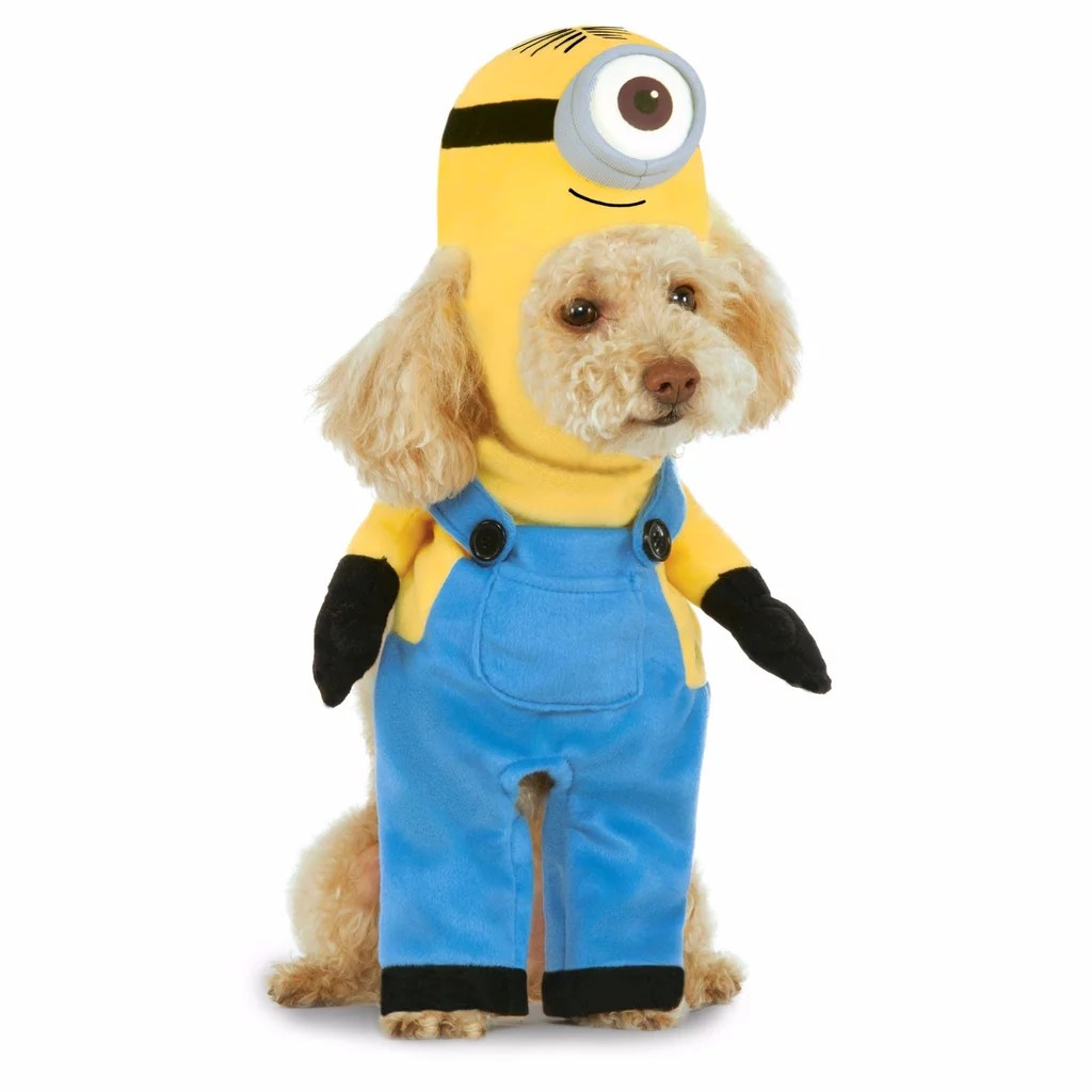 Cheap Pet Costumes