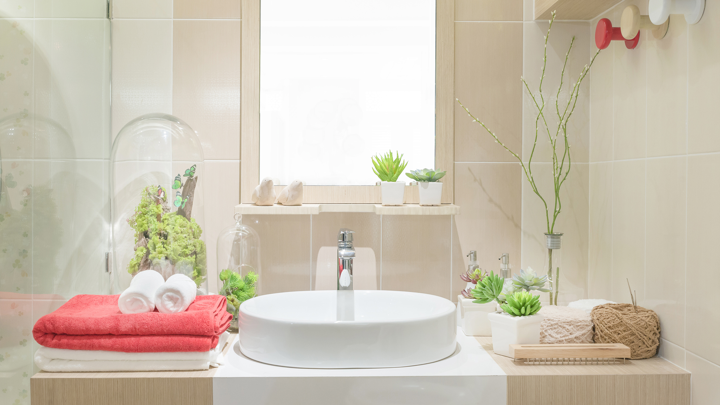 Badezimmer Set One 3 Benefits Of Bathroom And Shower Plants - Today.com