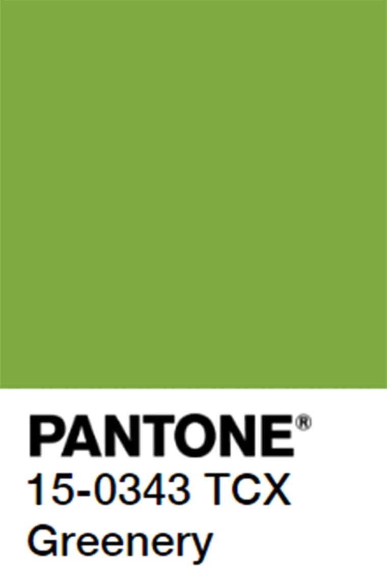 Greenery Pantone Pantone S 2017 Color Of The Year Is A Lovely Shade Of Greenery
