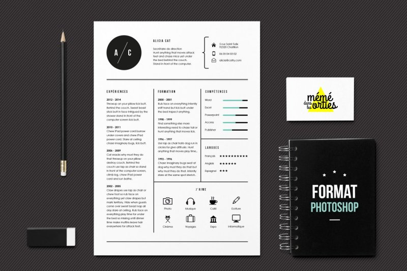 CV Cat - Resume template Photoshop By MéméDansLesOrties