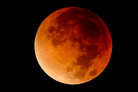 stupor moon