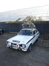 Help finding mk1 escort roof rack?