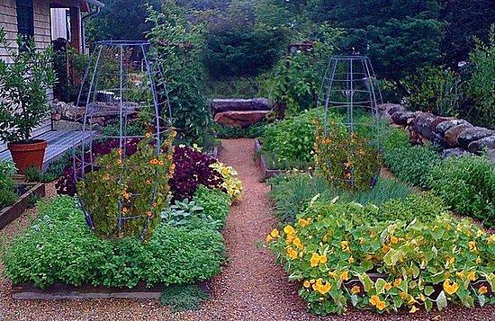 Terra Trellis herbal garden