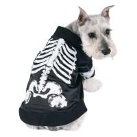 Facts About Animal Skeletons | POPSUGAR Pets