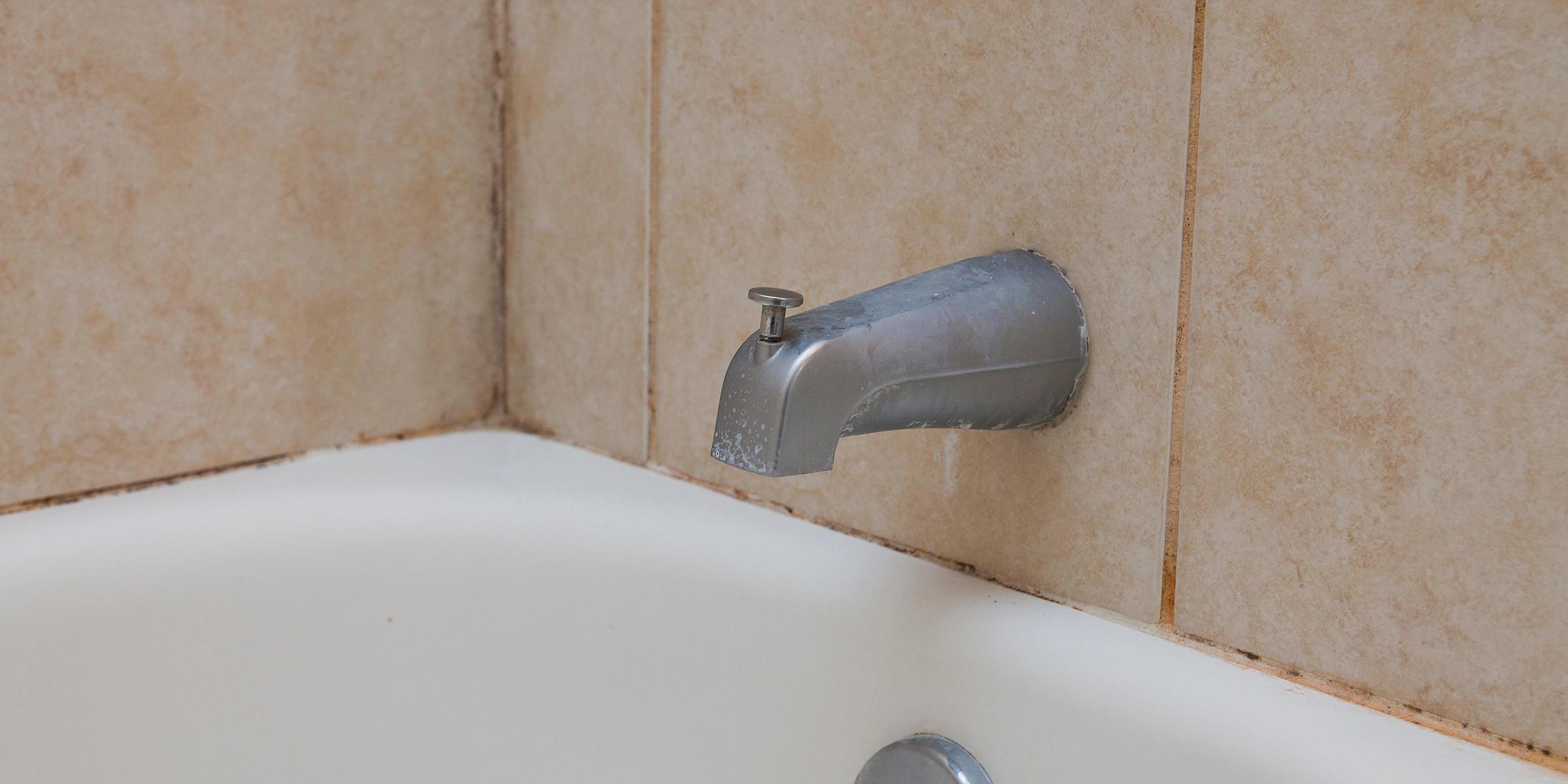 What To Know About Bathroom Mold And When You Should Worry