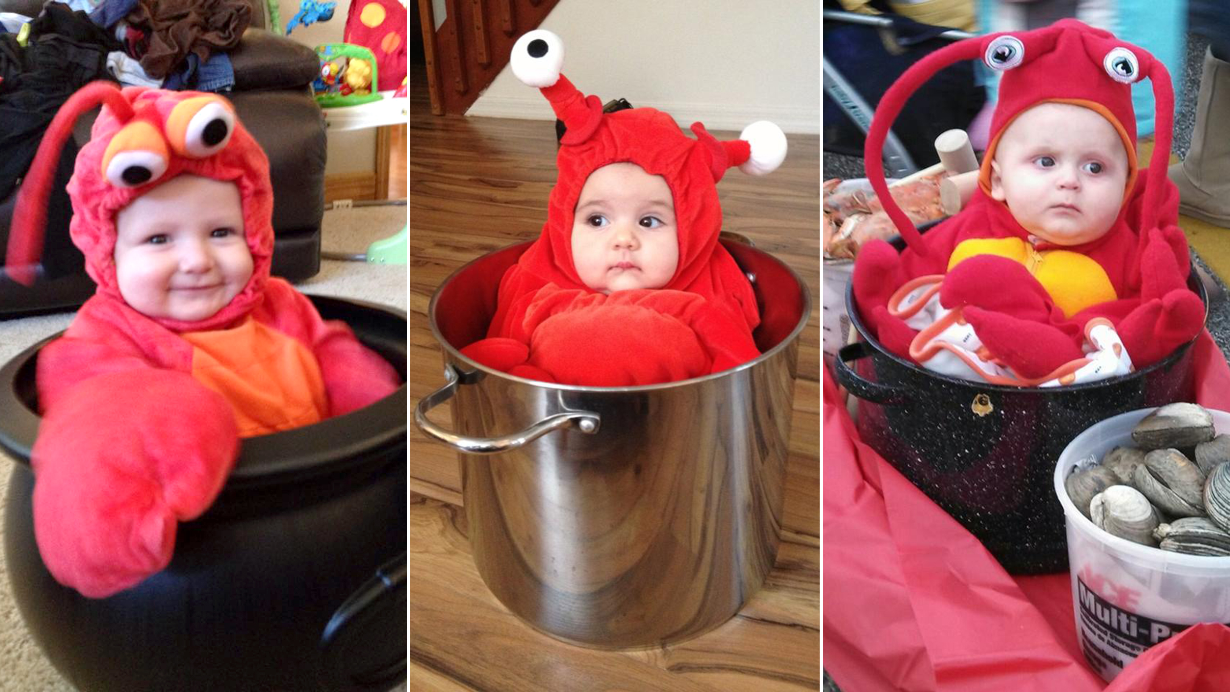 Baby Faschingskostüm Selber Machen Babies 39 Halloween Costumes Check Out These Adorable Tots