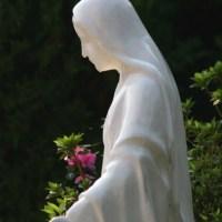 O papel das imagens na piedade católica