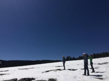 Does El Nino Bring Snow