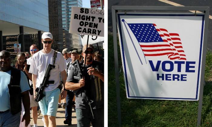 Voter ID / Guns image