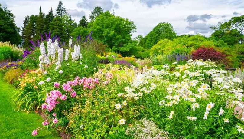 Vermont Garden Journal Tips For Great Garden Design Vermont   Garden Design  Journal