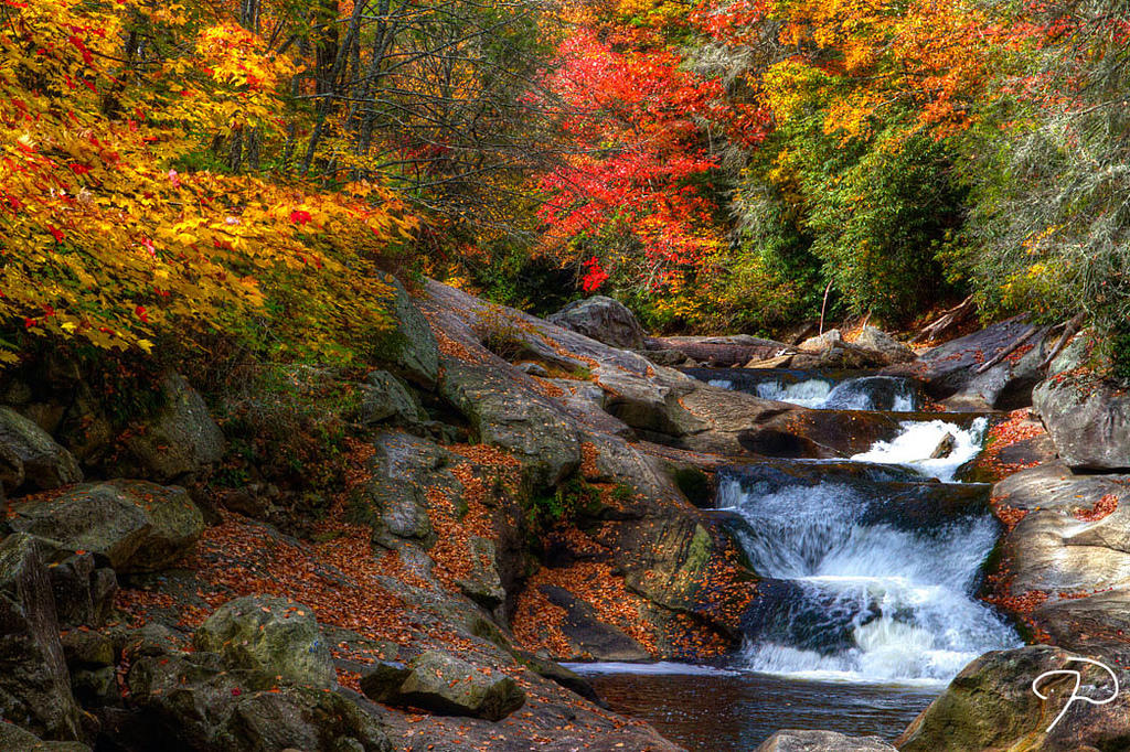 Fall Colors Wallpaper New England Map Shows Where And When Fall Colors Peak In North