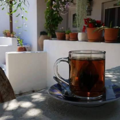 fotografie amintire din Grecia, cind a mers cu mama ei la o cafenea cu o moara de vint