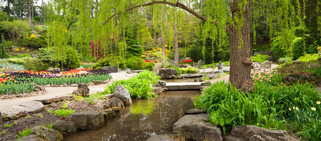 Jardinage - 15 idées pour un jardin zen Psychologies - Jardin Japonais Chez Soi