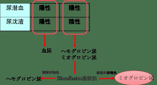 urine myoglobin4