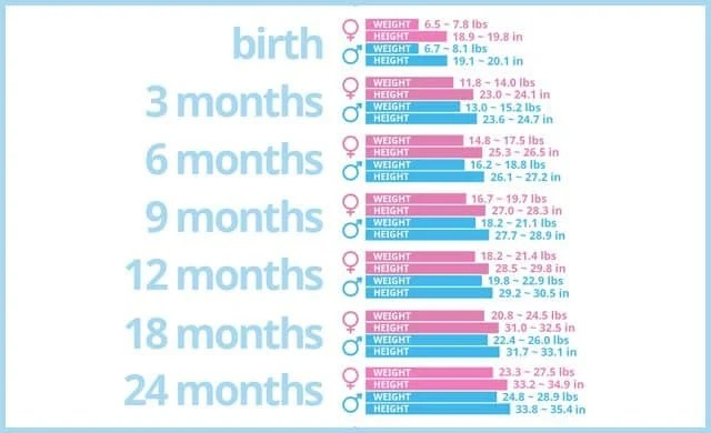 Baby Growth Chart - Medical Chart Help