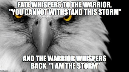 I am the storm meme