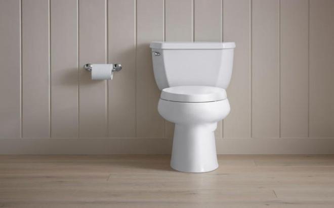 3039016-slide-s-5-this-deodorizing-toile