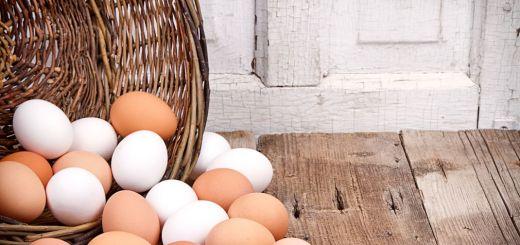 egg1070