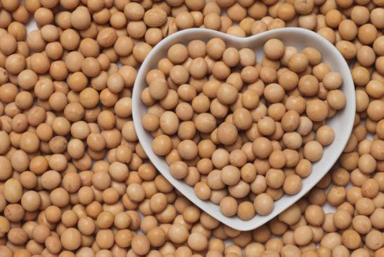 La FDA podría revocar la declaración de que la soya es saludable para el corazón